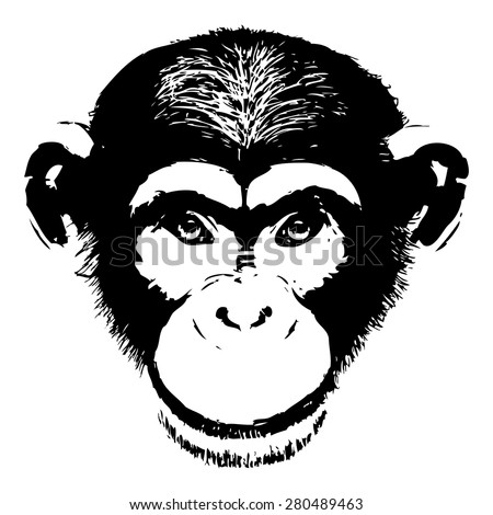 Monkey head avatar, Chinese zodiac sign, black silhouette isolated on white, hand drawn portrait, grunge, front face.  - stock vector