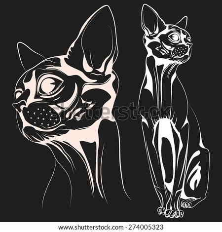Monochrome bald cat, a set of two objects: the head of a cat and the cat entirely. Vector illustrations - stock vector