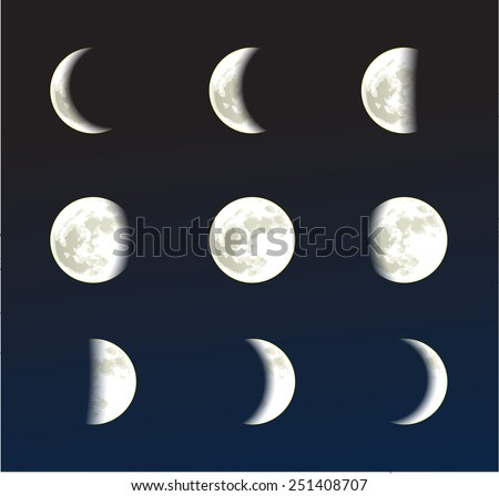 Moon phases vector - stock vector
