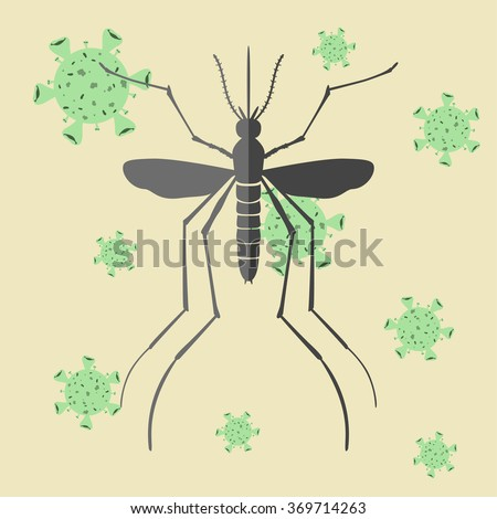 Mosquito and virus. Mosquitoes carry many disease such as dengue fever, zika disease, yellow fever, chikungunya disease, filariasis, malaria , enchaphalitits and else. - stock vector