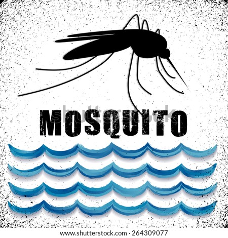 Mosquito, standing water, grunge background, graphic illustration. EPS8 compatible. - stock vector