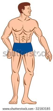 Muscular man standing front - stock vector