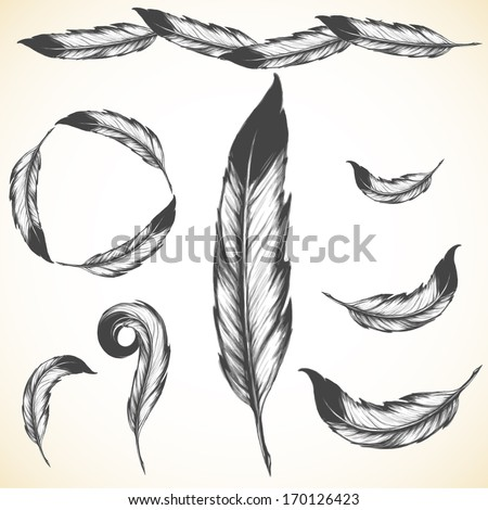 Indian feather stock photos images amp pictures shutterstock