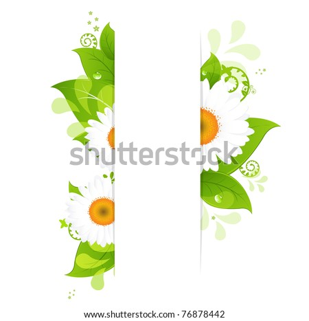 Natural Background With Camomiles, Isolated On White Background, Vector Illustration - stock vector