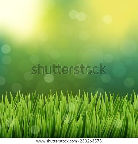 Natural green grass background - stock vector