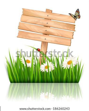 Nature background with green grass and flowers and wooden sign Vector.  - stock vector