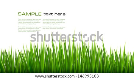 Nature background with green grass. Vector.  - stock vector