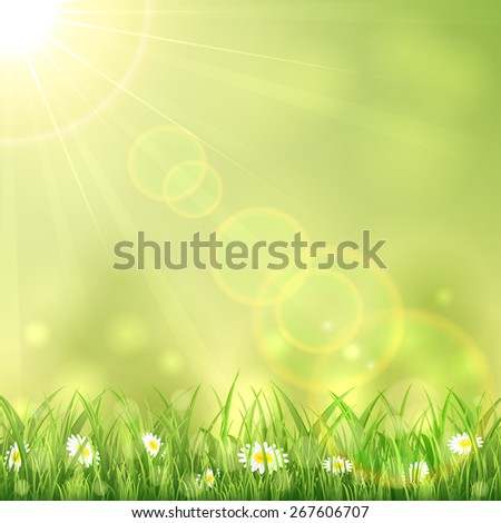 Nature background with the summer Sun and flowers in the grass, illustration. - stock vector