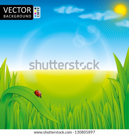 Nature Grass Sky Sun Cloud Shine Light Ladubug Background CMYK Color - stock vector