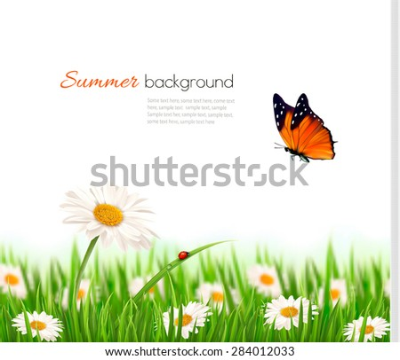 Nature summer daisy flowers with butterfly. Vector illustration. - stock vector