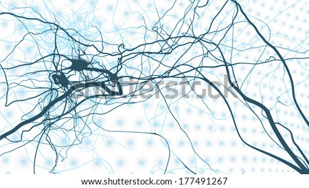 Neuron cells network, vector concept of neurons and nervous system - stock vector