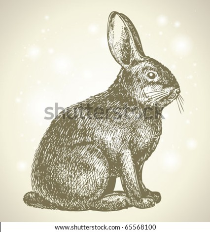 new year bunny beautiful drawing - stock vector