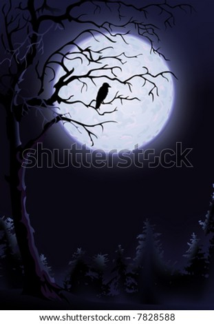 Night raven on a tree (other landscapes are in my gallery) - stock vector