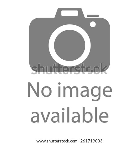 No image available sign. Internet web icon to indicate the absence of image until it will be downloaded. - stock vector