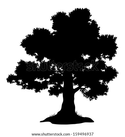 Oak tree with leaves and grass, black silhouette on white background. Vector - stock vector