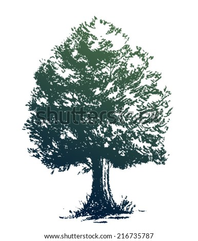 Oak tree with leaves, silhouette on white background - stock vector
