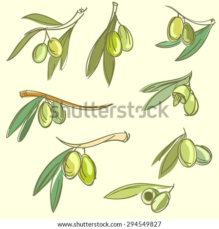 Olive icons set or collection with tree branch and oil vector illustration - stock vector
