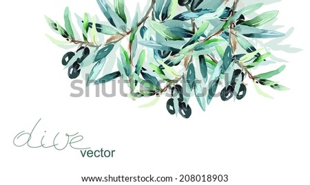 Olive Twig - stock vector
