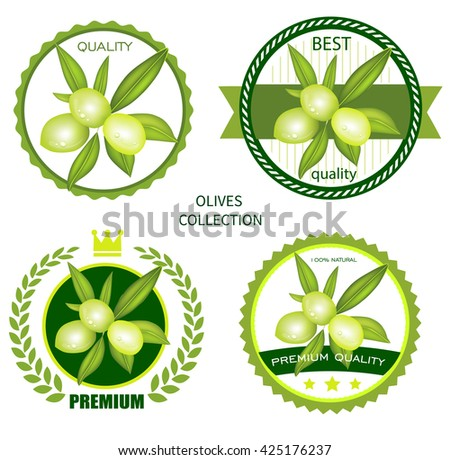 Olives on a branch. - stock vector