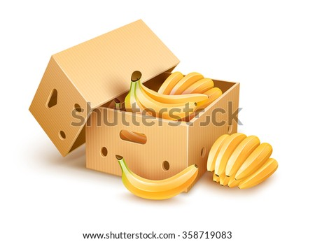 Open cardboard box with yellow banana fruits inside. Vector illustration, isolated on white background. Packaging for fruits of vegetables for delivery, storage and transportation. - stock vector