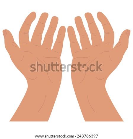 Open hand. Isolated vector - stock vector