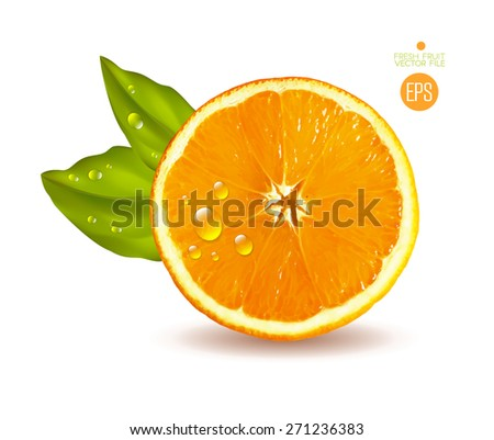 Orange cut in half. Citrus isolated on white background beautiful fresh fruit. Vector realistic art illustration for advertising packaging carton bottle banner wallpaper.  - stock vector