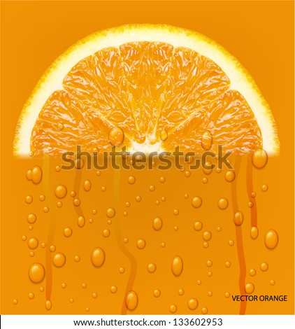 Orange fruit with water drops background. Vector illustration. - stock vector