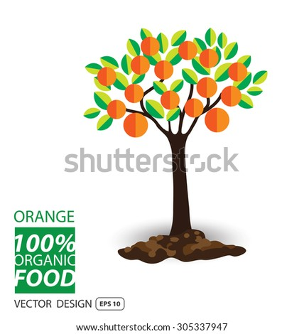 Orange, fruits vector illustration. - stock vector