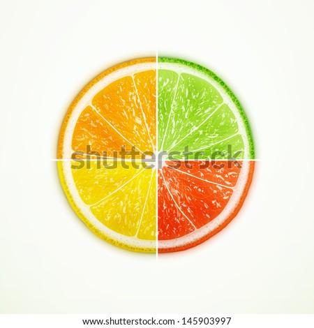 Orange, lime, lemon and grapefruit quartered eps10 vector illustration - stock vector