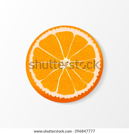 oranges slice over white.  vector illustration for your design - stock vector