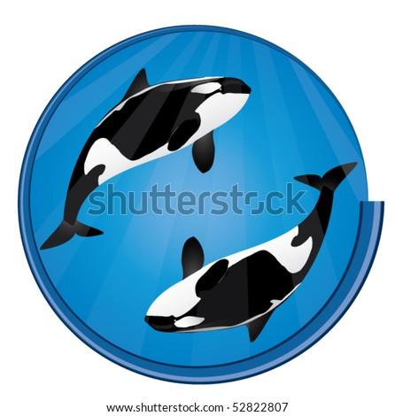 orca whales blue circle icon - stock vector
