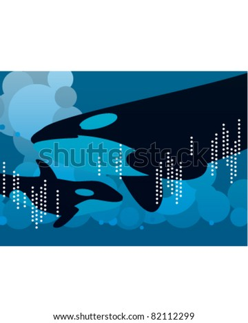 Orcas / Killer Whales - stock vector