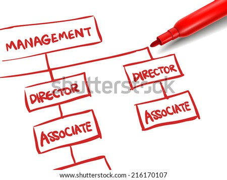 org chart with a red marker over white - stock vector
