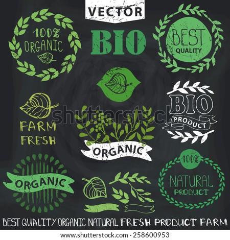 Organic,bio,natural logotype design template.Set of badges,labels,logo,floral elements,wreaths and laurels.Hand drawing painting.Vintage vector,green colors.Logo maker.Chalkboard background - stock vector