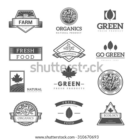 Organic food logos, labels and vector elements. Fresh and natural food.  - stock vector