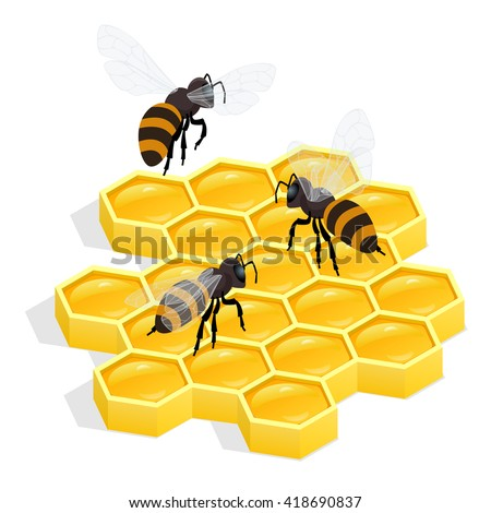 Organic raw honey, honey comb, honey flyer, honey Apiary, honey ladle, honey bee, honey dipper, honey flowers, honey wax, honey beehive, honey natural, honey healthy food production, honey flat - stock vector