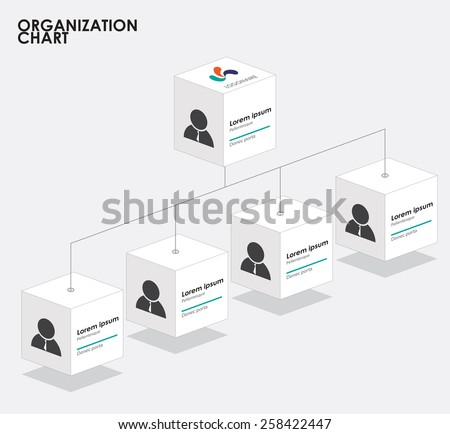 Organization chart infographics with tree,  Box organization with 3 dimention. vector illustration. - stock vector