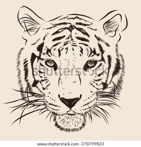 Original artwork tiger with dark stripes, isolated on white background, and sepia color version, vector llustration. EPS - stock vector