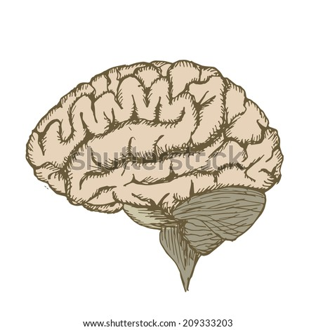 Paint vector ink brain - stock vector