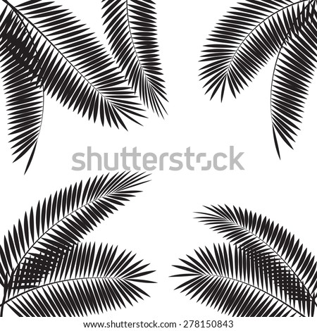 Palm Leaf Vector Illustration EPS10 - stock vector