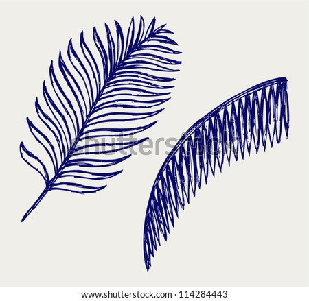 Palm leaves. Doodle style - stock vector