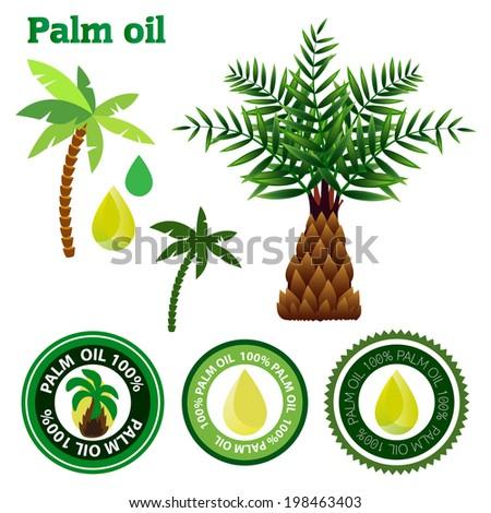 Palm oil vector set - stock vector