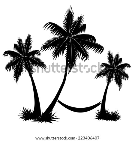 palm trees on white background vector - stock vector