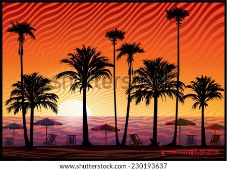 Palm trees silhouette at sunset. Vector illustration - stock vector