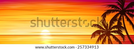 Palm Trees with Sunset, Sunrise and Sea, Ocean. Vector EPS 10. - stock vector