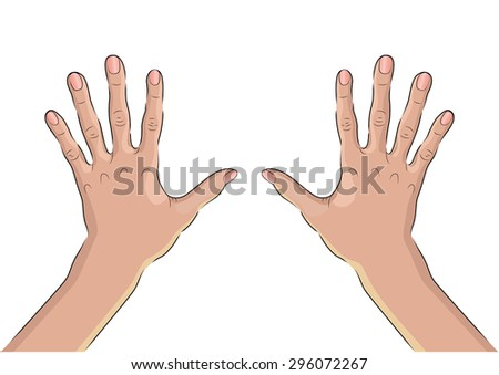 Palms of two hands from the outside. A wrist. - stock vector