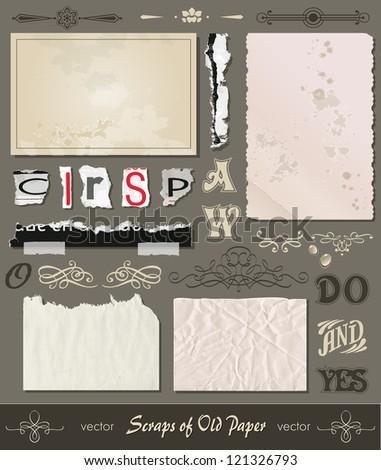 paper scraps - letters - calligraphical elements for a decor-postcard.Digital scrapbooking - stock vector