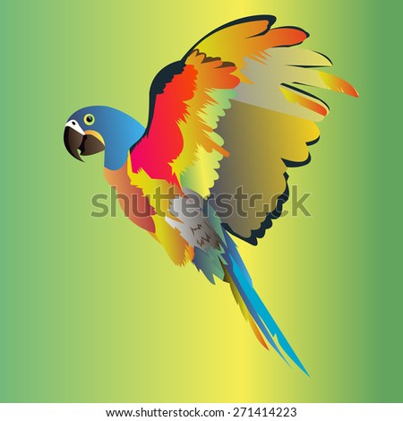 parrot bird vector tropical macaw red colorful - stock vector