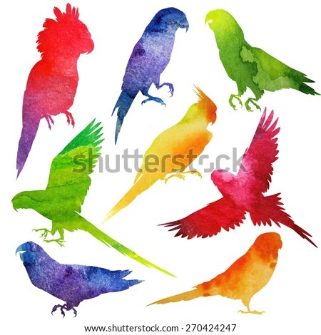Parrot Silhouette. watercolor vector illustration - stock vector