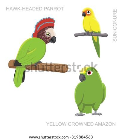 Parrot South America Cartoon Vector Illustration - stock vector